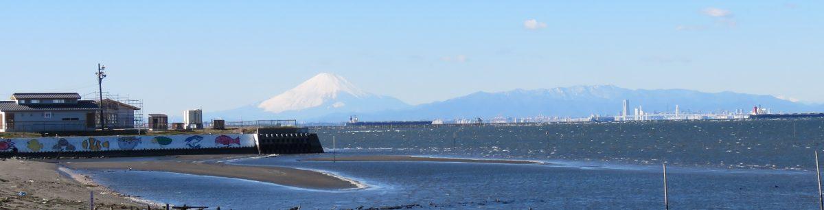 金田漁業協同組合